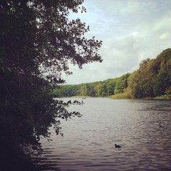 Lake Schlachtensee in Berlin, Germany in early Fall.