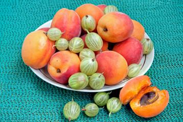 абрикосы1