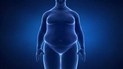 male obesity and helathy life style concept anterior view detail
