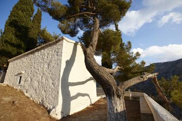 Traditional greek church with pine tree. Crete. Greece