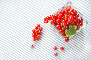 Red currant in a glass bowl on a black and white background