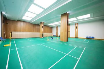 Bright Badminton Court