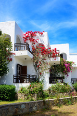 Villas decorated with flowers at luxury hotel, Crete, Greece