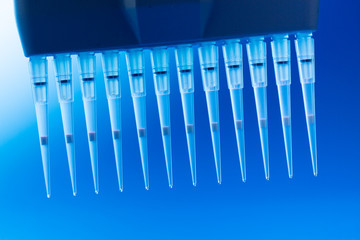Multichannel Pipette
