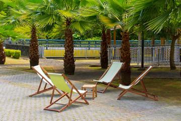Liegestühle unter Palmen