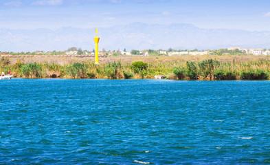 Delta of Ebro river in summer