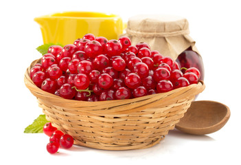 red currants on white