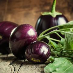 Harvest of Round Eggplants