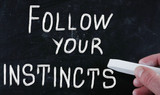 follow your instincts poster