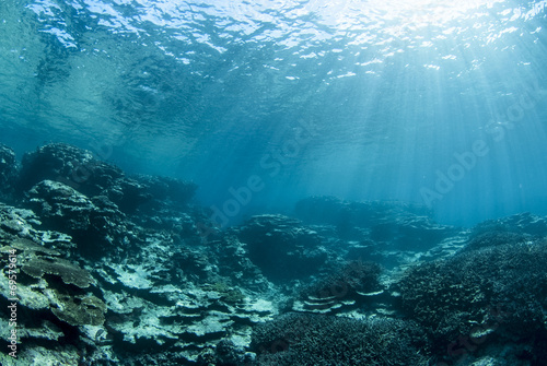 Fotobehang Koraalriffen 海底に差し込む光