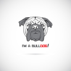 Bulldog head. Vector illustration.