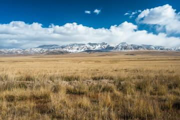 Tibetan highlands and distant snowy mountains near Daotanghe