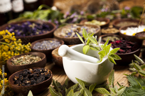 Assorted natural medical herbs and mortar - 69581893