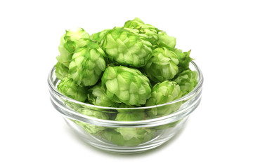 green cones of hops in a glass container on a white background