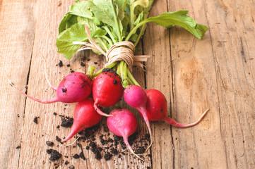 fresh radish on wooden table