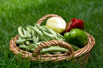 Grüne Bohnen und frischer Paprika