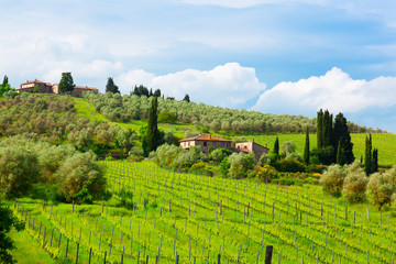 rural house on the hill among vineyards,  Tuscany, Italy
