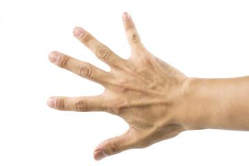 手のひらのパー