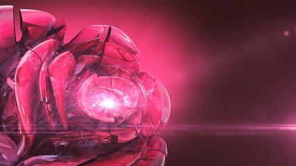 magenta crystal rose rotating