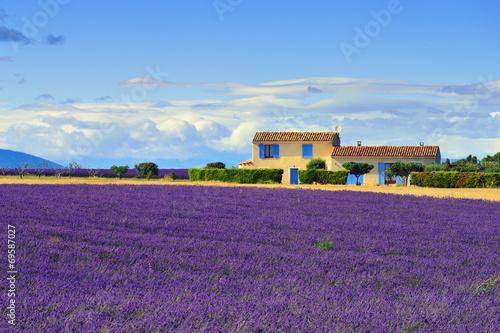 Provence rural landscape © Oleg Znamenskiy