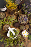 Fototapety Fresh medicinal herbs on wooden