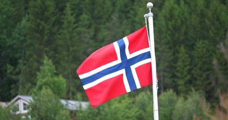 4K, Flag Of Norway, Forest