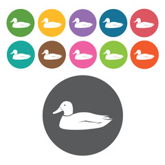 Duck icons set. Round colourful 12 buttons. Vector illustration