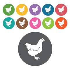 Chicken icons set. Round colourful 12 buttons. Vector illustrati