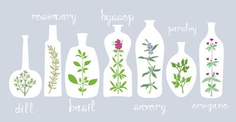 Aromatic Plants in Bottles
