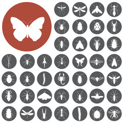 Insects icon set.  Illustration eps10