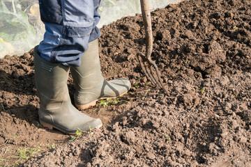Digging Allotment