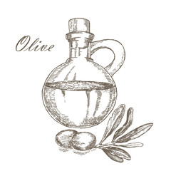 Olive oil with jar hand drawn illustration isolated