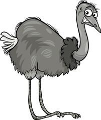 nandu ostrich bird cartoon illustration
