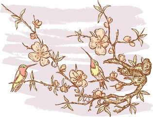 Humming-birds on a branch