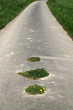 canvas print picture - Feldweg mit grünen Inseln