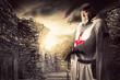 knight Templar - 69599432