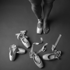Pointe shoes collection, monochrome