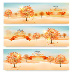 Three autumn abstract banners with colorful leaves and trees. Ve