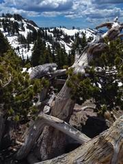 lassen national park trail to the lassen peak