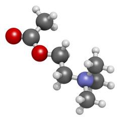 Acetylchloline (ACh) neurotransmitter molecule.