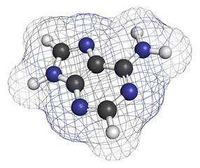 Adenine (A, Adenine) purine nucleobase molecule.