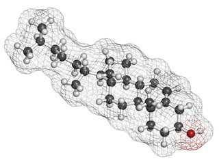 Cholesterol molecule. Essential component of cell membranes.