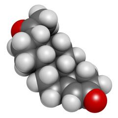 Theobromine (xantheose) chocolate alkaloid molecule.
