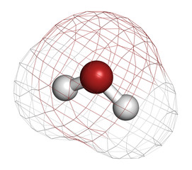 Water (H2O) molecule. Atoms are represented as spheres