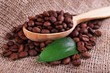 Wooden spoon of coffee beans on sacking background closeup