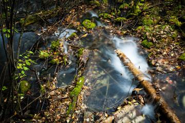 The stream of moss