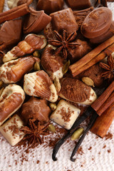 Different kinds of chocolates with spices on white background
