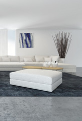 Modern white living room interior