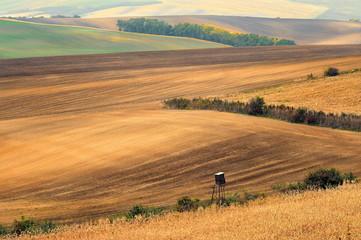 Krajobraz wiejski, Morawy, Czechy