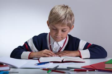 Calm boy doing homework
